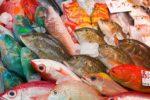 沖縄の魚の名前と食べ方