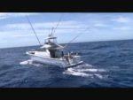 トローリングで釣る沖縄魚